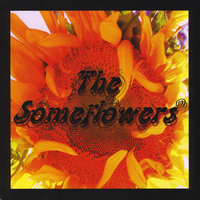 The Someflowers — The Someflowers