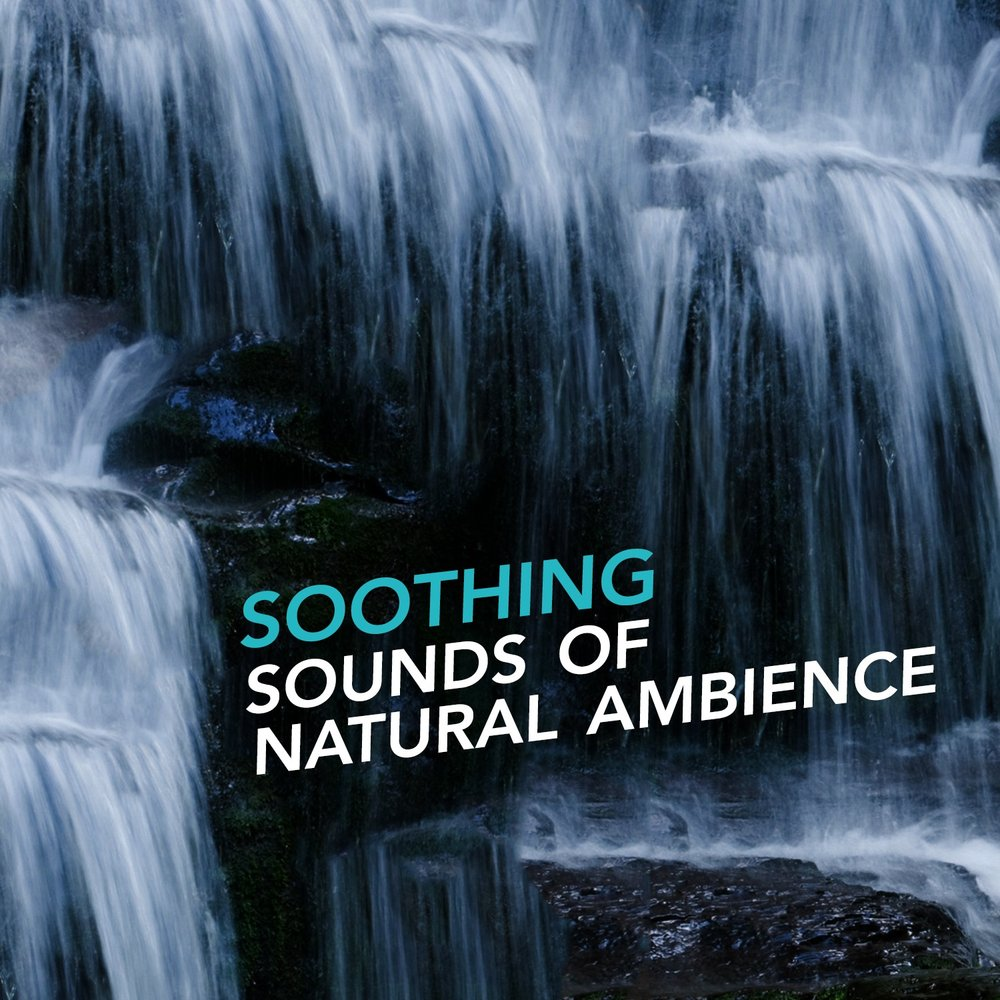 Soothing Sounds of Natural Ambience — Nature Sounds Relaxing