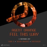 Feel This Way — Agent Orange