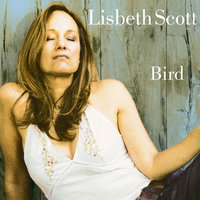 Bird — Lisbeth Scott