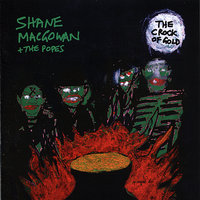 The Crock Of Gold — Shane MacGowan, The Popes