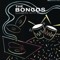 Numbers With Wings — The Bongos