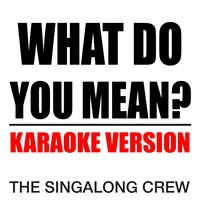 What Do You Mean? — The Singalong Crew