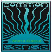 What's It All About — Common Sense