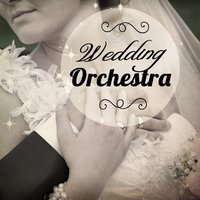 Wedding Orchestra — сборник