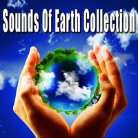 Sounds of Earth Collection (Nature Sounds) — Nature Soundscapes