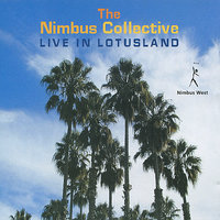 Live in Lotusland — The Nimbus Collective