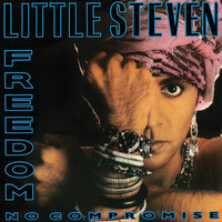 Freedom No Compromise — Little Steven