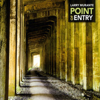 Point Of Entry — Larry Murante