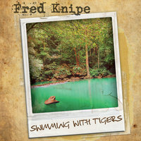 Swimming With Tigers — Fred Knipe