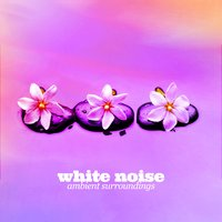 White Noise: Ambient Surroundings — White Noise