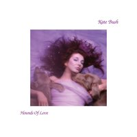 Hounds Of Love — Kate Bush