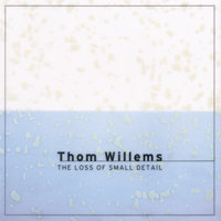 Willems: The Loss Of Small Detail — Thom Willems