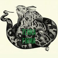 Terra Firma — The Young Knives