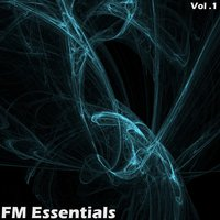 FM Essentials - Volume 1 — Eitan Carmi