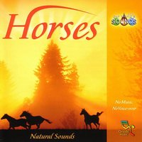 Horses — Our World's Sounds