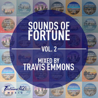 Sounds of Fortune Volume 2 — Euro Beard