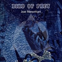 Bird Of Prey — Joe Newman