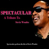 A Tribute To Stevie Wonder — Spectacular
