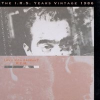 Life's Rich Pageant: The I.R.S. Years Vintage 1986 — R.E.M.