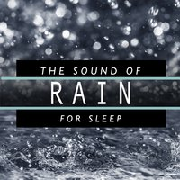 The Sound of Rain for Sleep — Rain Sounds Sleep