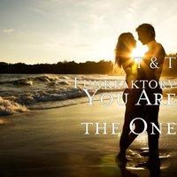 You Are the One — T & T Funkfaktory