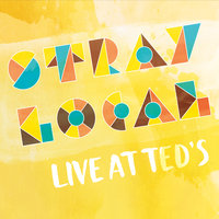 Live at Ted's — Stray Local