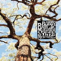 A Storm - A Tree - My Mother's Head — Bobby Bare Jr.
