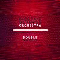 Double Negro — Electric Octopus Orchestra