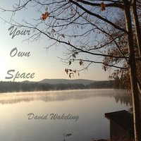 Your Own Space — David Wakeling