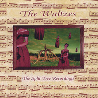 The Waltzes,  Live at Split Tree Farm Studio — Split Tree Waltzes