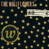 Bringing Down The Horse — The Wallflowers