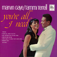You're All I Need — Marvin Gaye, Tammi Terrell