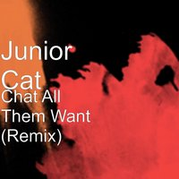 Chat All Them Want — Junior Cat