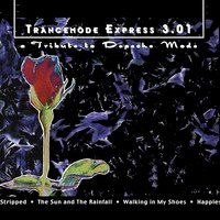 Trancemode Express 3.01 a Tribute to Depeche Mode — сборник