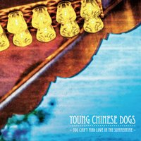 You Can't Find Love in the Summertime — Young Chinese Dogs