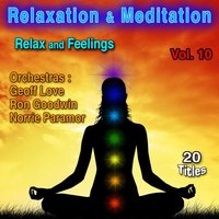 Relaxation & Meditation Vol. 10: Relax and Feelings — Geoff Love Orchestra