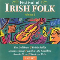 Festival Of Irish Folk - Volume 2 — сборник