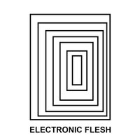 Electronic Flesh — Remy Shand, Canary