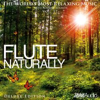 The World's Most Relaxing Music with Nature Sounds, Vol: 17: Flute Naturally — Global Journey