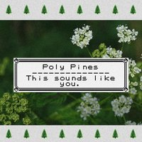 This Sounds Like You. — Poly Pines