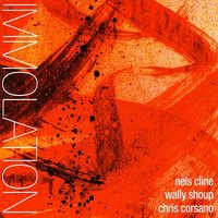 Immolation/Immersion — Nels Cline, Wally Shoup, Chris Corsano