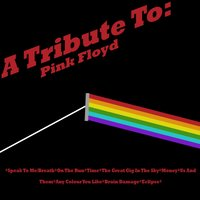 A Tribute To: Pink Floyd — Pink Fraud