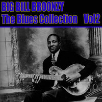 The Blues Collection Vol 2 — Big Bill Broonzy