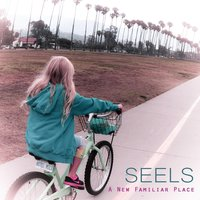 A New Familiar Place — Seels