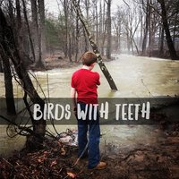 Birds with Teeth — Birds & Teeth
