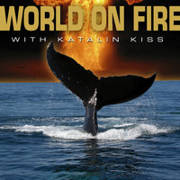 World On Fire With Katalin Kiss - 2 song EP — World On Fire