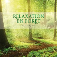 Relaxation En Foret — STUART JONES