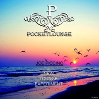 New Lounge Experiment — Joe Piccino