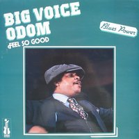 Feel So Good — Lucky Peterson, Magic Slim, Big Voice Odom